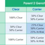 AffinityDNA Canine Degenerative Myelopathy DNA Testing DM Chart
