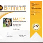Example DNA My Dog Test Certificate