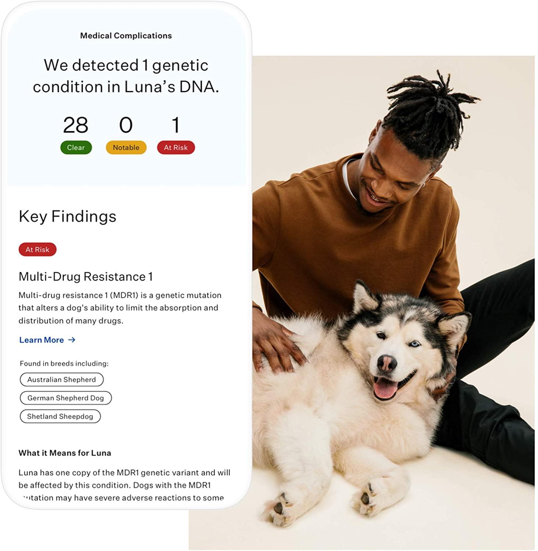 Wisdom Panel Essential Dog Medical Complications